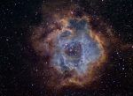 Rosette Nebula in Hubble Colors